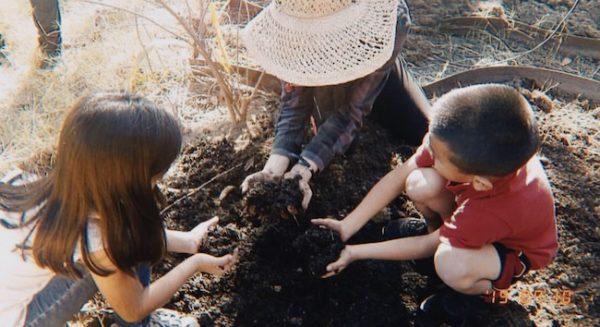 Diana Andrews Gardening